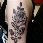 roos kelly