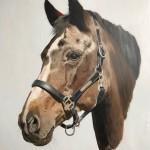 Robert Veldman Tattoo Alkmaar olie schilderij paard